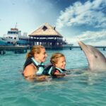 The Top 3 Places to Swim with Dolphins in Jamaica